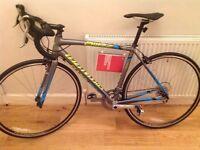 Brand new Specialized Allez Elite Road Bike