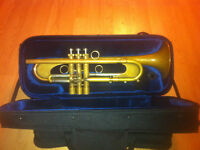 Taylor Chicago custom II trumpet Bb