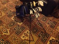 Mixed ram golf clubs and stand bag