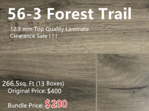 12.3 mm Laminate On Clearance Sale! 13 Boxes for Only $200!
