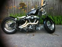 2009 Custom Harley Davidson Nasty Boy