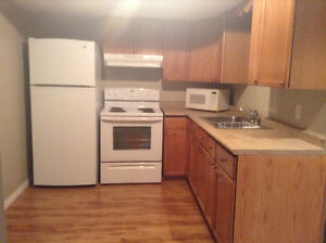 Large one bedroom basement suite for rent