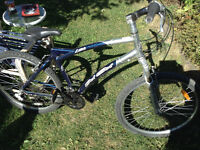 "Del Sole 21"" Large Mountain Bike 21 Speed"