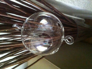 Hanging Glass Globes for wedding decoration or air plants
