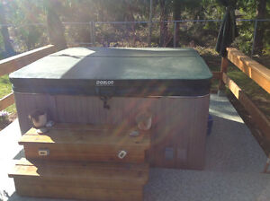 Used 6 person hottub