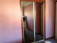 Mirror Sliding Doors
