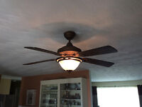 Ceiling fan with matching light