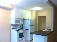 Beautiful Renovation/Great Mtn Location FREE Parking too!