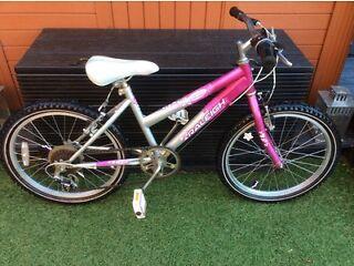 Raleigh krush girls mountain bike