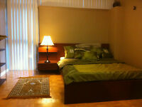 Room ideal for proffesional Muslim Male., $500