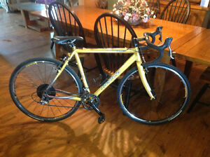 Norco ccx1 cyclocross bike for sale