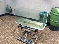 All glass bow front aquarium vivarium fish tank