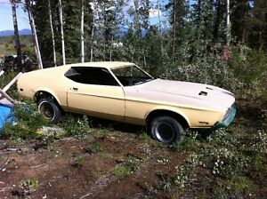 1971 Mach 1 Restoration Project