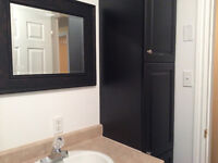 3 Bedroom Apartment~ Newly Renovated!