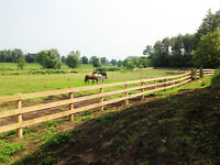 CGW Stables Horse Boarding - Great facility
