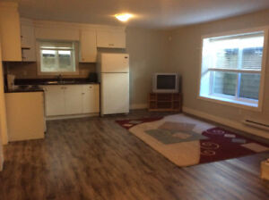 2 BR basement suite for rent: $1200.00 per month (SURREY)