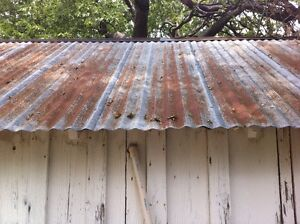 Wanted: Roof Steel