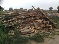 Large pile of firewood free