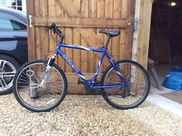 TREK men's mountain bike