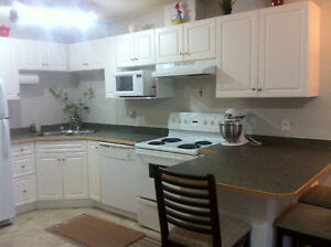 Clean & spacious One Bedroom Condo for Rent available October 1