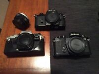 Collection of 35mm cameras (Nikon and Olympus)