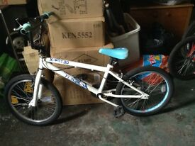 20 inch BMX