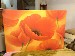 Fun and colourful Poppy Picture