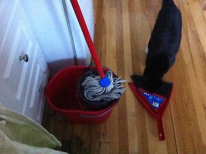 saut mope balayette balai ménage