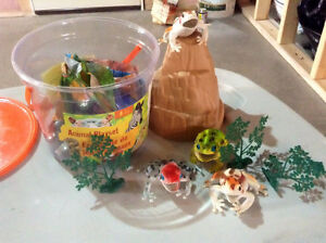 Bucket of frogs play set