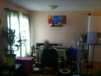Newly renovated one bedroom suit for rent utilities included
