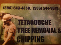 Tree Removal, Chipping, Stump Removal, Topsoil