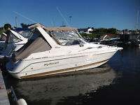 2001 Wellcraft 2600 Martinique for Sale
