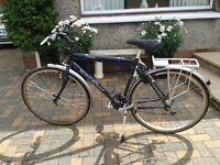 Raleigh Trail Bicycle