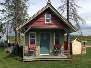 12 x 16 cabin/shed