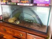 """48x13"""" lizard or snake tank"""