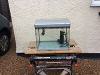 Bow front complete tropical aquarium fish tank set up
