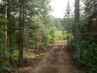 168 acre Muskoka land for sale