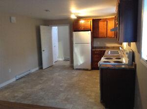 1 Bedroom Apartment CBS