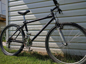 Giant CFM 4 Carbon Fiber mountain bike