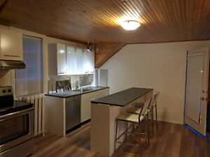 ONE of a Kind, Pet Friendly 2 BR + a Loft & 2 Private Decks Kitchener / Waterloo Kitchener Area image 4