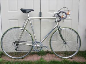 Bianchi Road Bike - Tall Rider !
