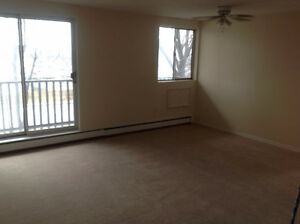 STEPS FROM FANSHAWE COLLEGE.  1 and 2 Bedroom Apartments London Ontario image 7