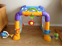 Fisher Price baby Gymtastics activity tunnel