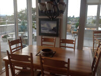 Furnished, Fire Pit, Hot Tub, SW Exp, large patio, bright, new.