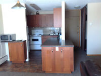 Large 2 Bedroom Condo furnished, with Storage room