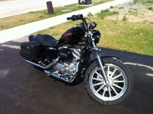 Harley Davidson Sportster with Low KMs