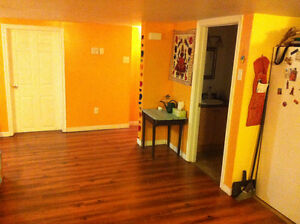 Room in 3 bedroom apartment near mun available immediately St. John's Newfoundland image 2