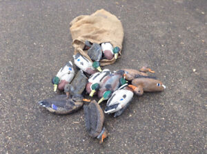 20 Floating Mallard Duck Decoys - Flambeau mixed