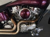 Delivery Available Uk Europe Stunning Custom Low Rider Softail Chop Not Harley Davidson Bobber