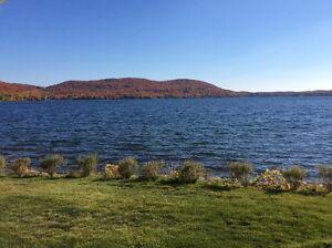 Magnifique  Bord de lac la nature et le calme